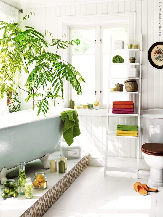 Revitalizing Bathroom Design Inspiration