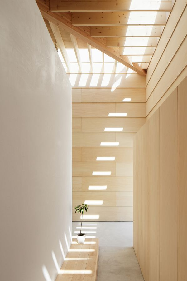 Natural Lighting Design Inspiration
