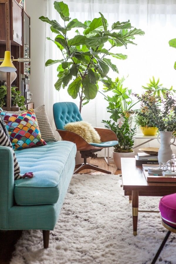 Colorful Mod Living Room With Fig