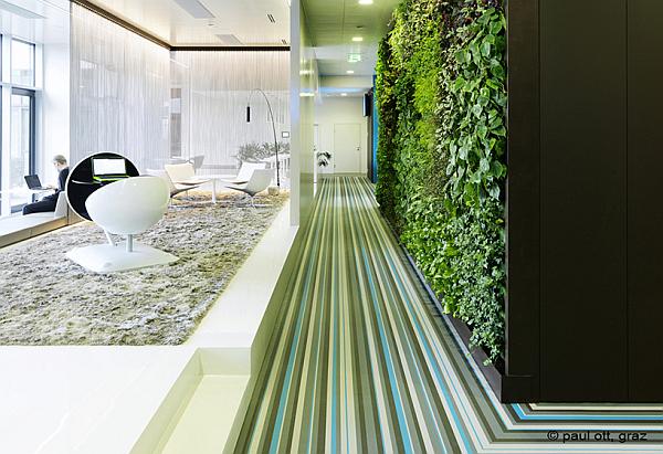 microsoft vienna office aesthetics